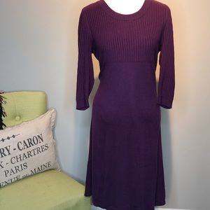 ATHLETA Plum Long Sleeve Swearer Dress Size XL